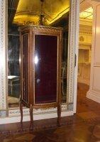 Витрина. 19 век. 146х68х33,5 см. 3350 евро. Находится в Москве